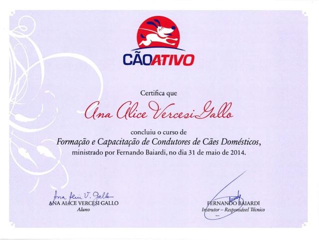Diploma Cao Ativo