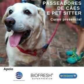 passeadores de cães insta (3)