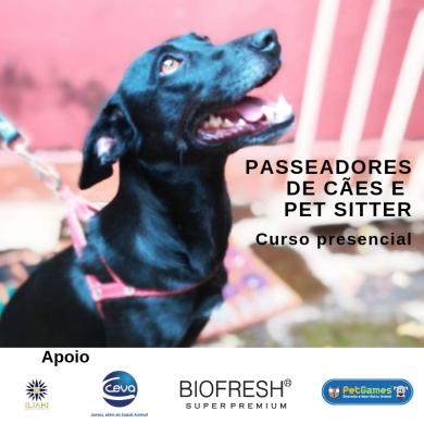 passeadores de cães insta (4)